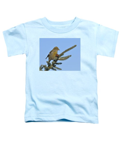 Spruce Cone Feeder Toddler T-Shirt by Tony Beck