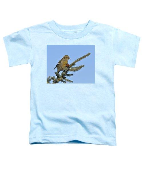 Spruce Cone Feeder Toddler T-Shirt