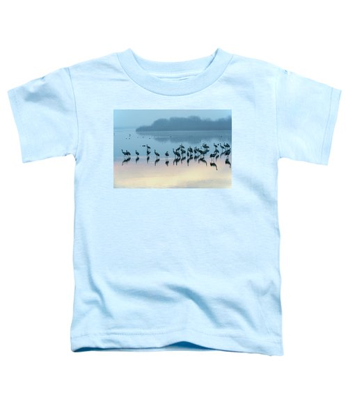 Sunrise Over The Hula Valley Israel 5 Toddler T-Shirt