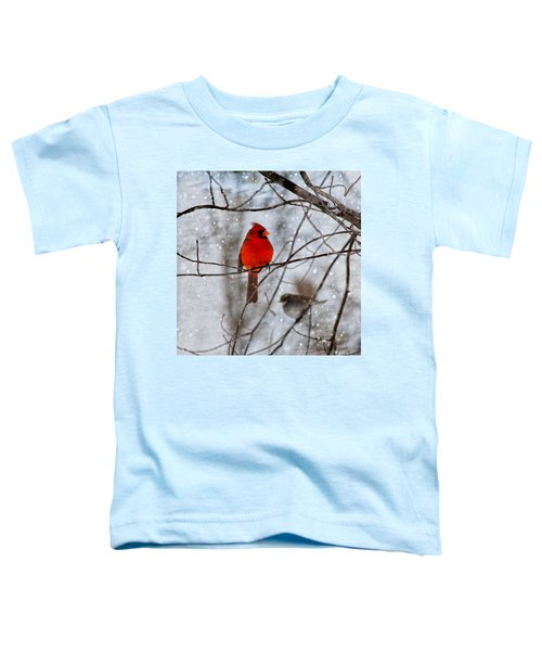 Blue Eyes In The Snow Cardinal  Toddler T-Shirt