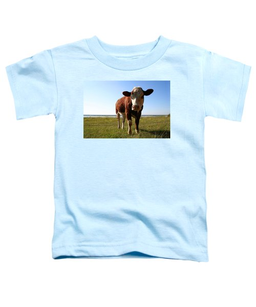 This Is My Grass Toddler T-Shirt