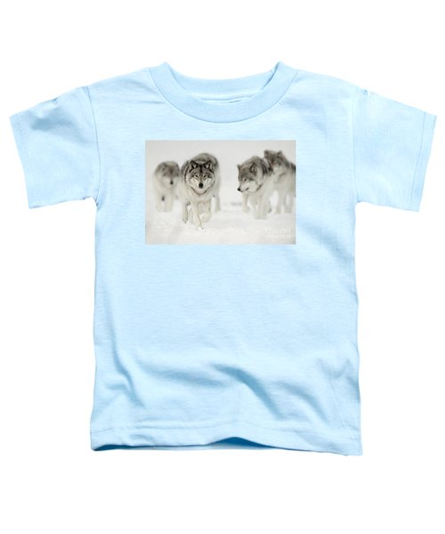 Timber Wolf Pictures 65 Toddler T-Shirt