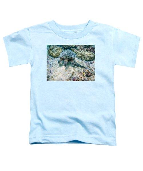 Swimming Turtle Toddler T-Shirt