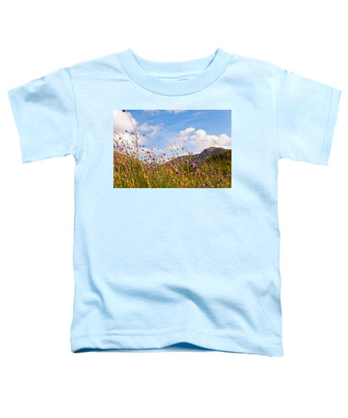 When The Sun Is Shining Everything Around Smiling Towards. Scotland Toddler T-Shirt