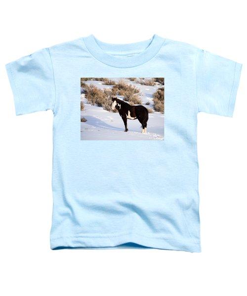 Wild Horse Stallion Toddler T-Shirt