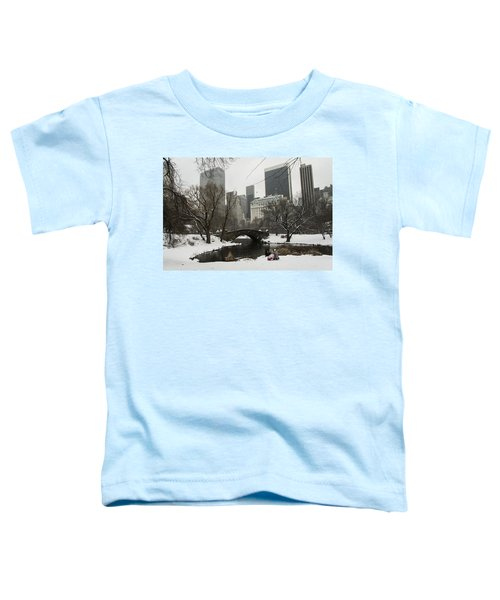 Winter In Central Park Toddler T-Shirt
