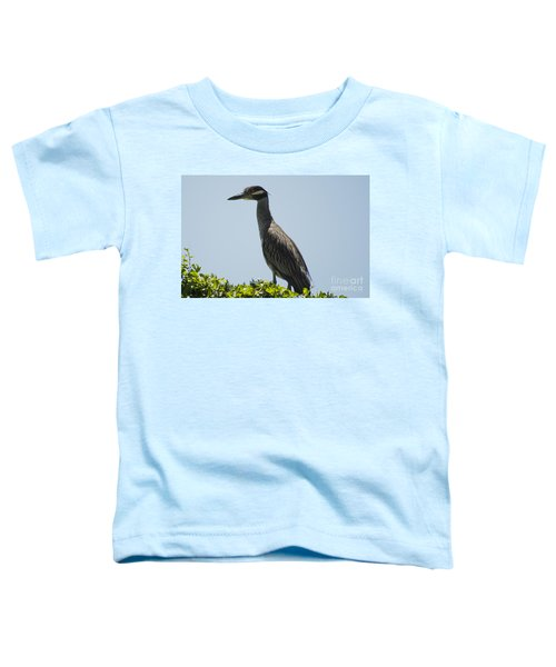 Yellow-crowned Night-heron Toddler T-Shirt