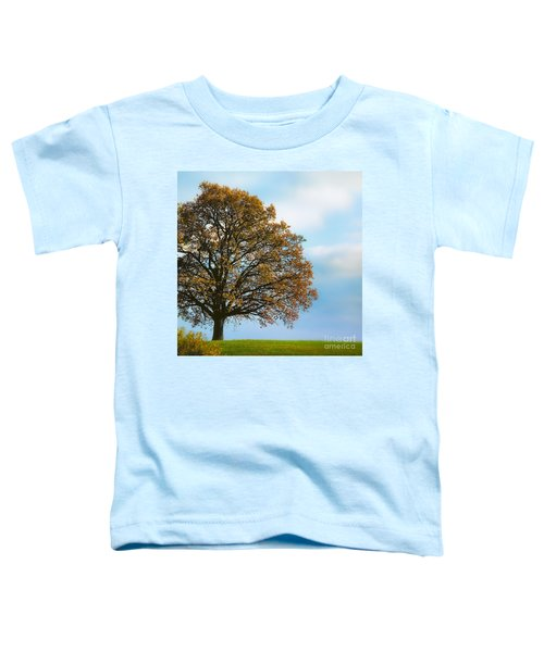 Alone On The Hill Toddler T-Shirt