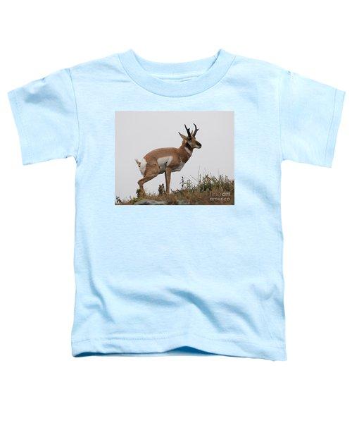 Antelope Critiques Photography Toddler T-Shirt