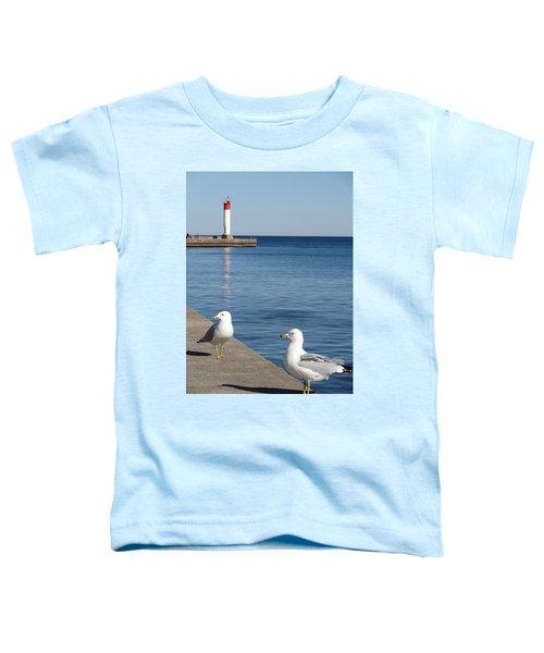 Bronte Lighthouse Gulls Toddler T-Shirt