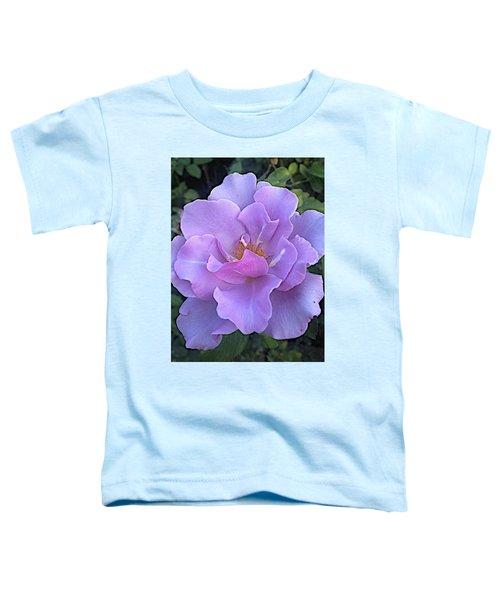 Faery Princess Toddler T-Shirt