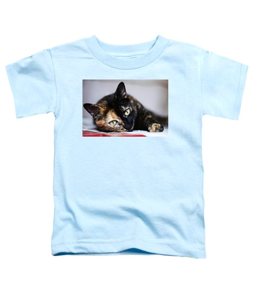 Himawari Toddler T-Shirt
