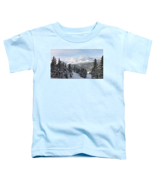 Joyful Day Toddler T-Shirt