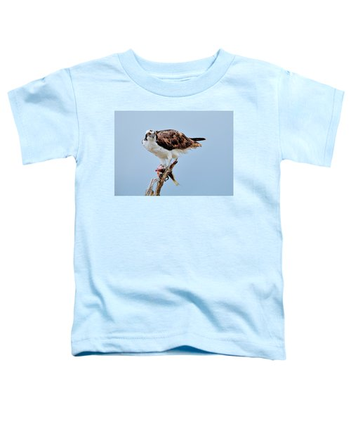 Osprey In The Morning Toddler T-Shirt