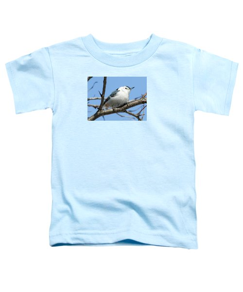 White-breasted Nuthatch Toddler T-Shirt by Ricky L Jones