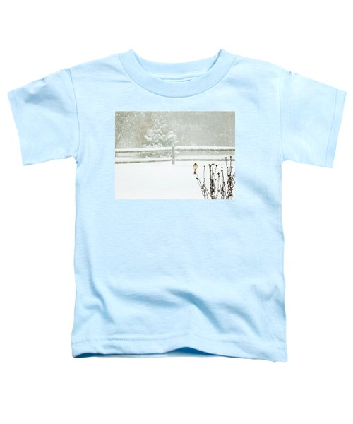 Winter Cardinal Toddler T-Shirt