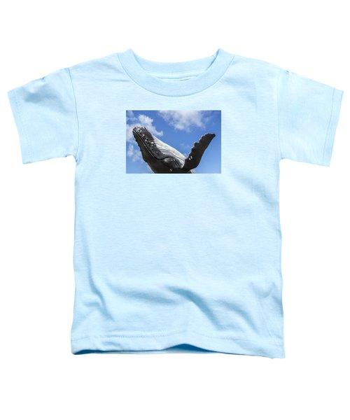 150729p196 Toddler T-Shirt