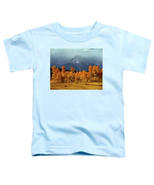 1m9235 Mt. Moran In Autumn Toddler T-Shirt