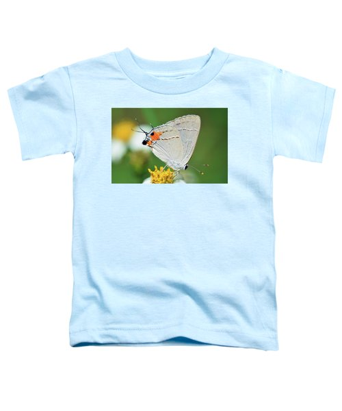 Hairstreak Toddler T-Shirt
