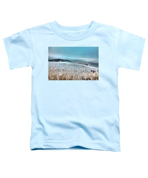 A Frosty Morning On The Palouse Toddler T-Shirt