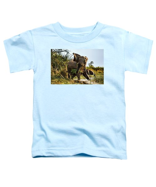 A Protective Mama Elephant With Calf  Toddler T-Shirt