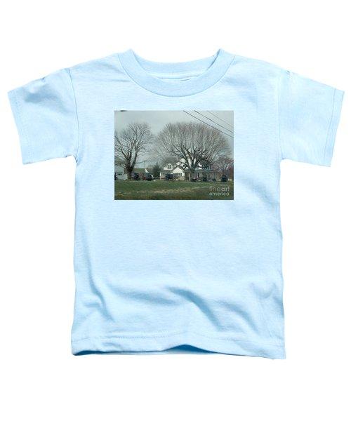 A Springtime Gathering Toddler T-Shirt
