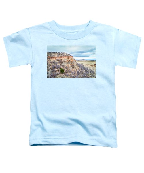 aerial view of northern Colorado foothills  Toddler T-Shirt
