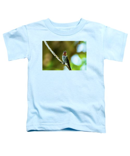 Anna's Hummingbird Toddler T-Shirt