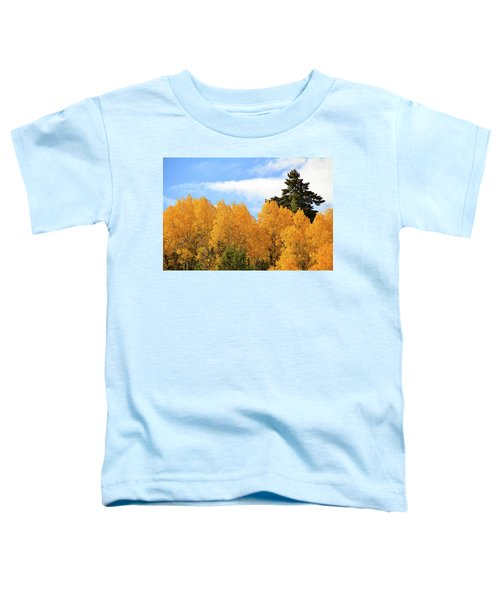 Autumn In The Owyhee Mountains Toddler T-Shirt