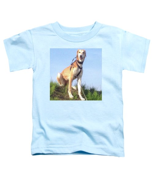 Ava-grace, Princess Of Arabia  #saluki Toddler T-Shirt