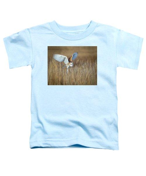 Barn Owl In Grass Toddler T-Shirt