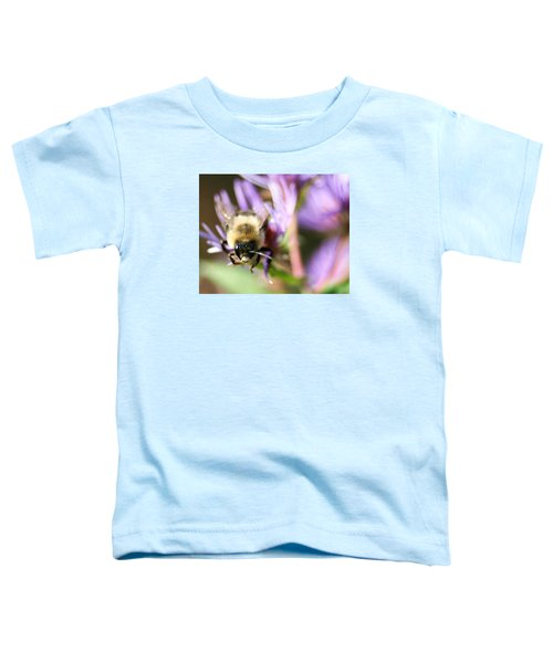 Bee Mustache Toddler T-Shirt