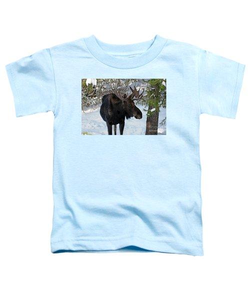 Big Moose Toddler T-Shirt