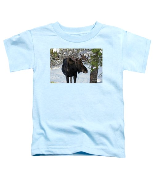 Big Moose Toddler T-Shirt