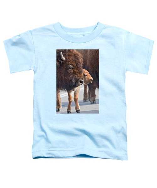 Bison And Calf Toddler T-Shirt