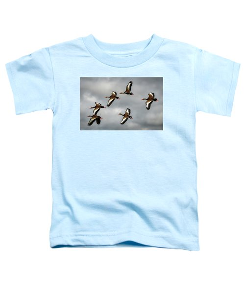Black Bellied Whistling Ducks Toddler T-Shirt