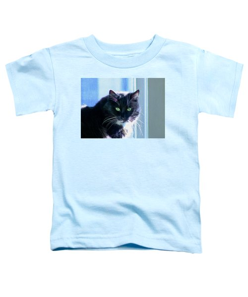 Black Cat In Sun Toddler T-Shirt