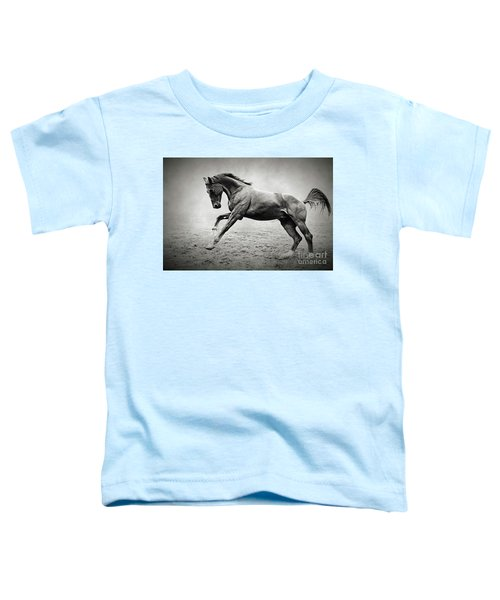 Black Horse In Dust Toddler T-Shirt