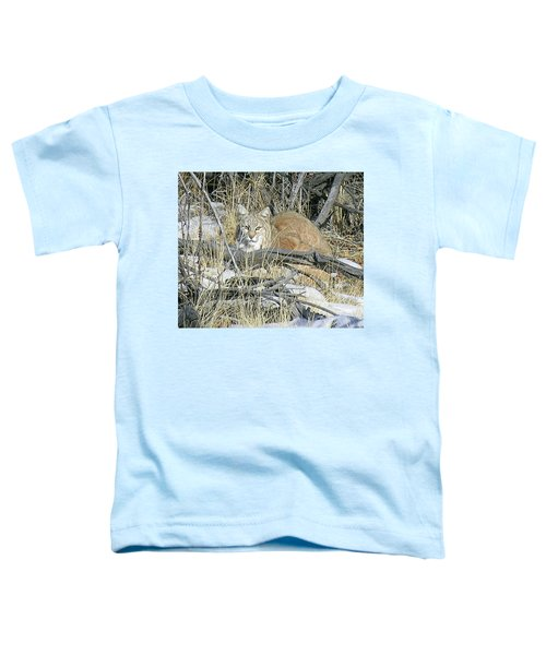 Bobcat Toddler T-Shirt