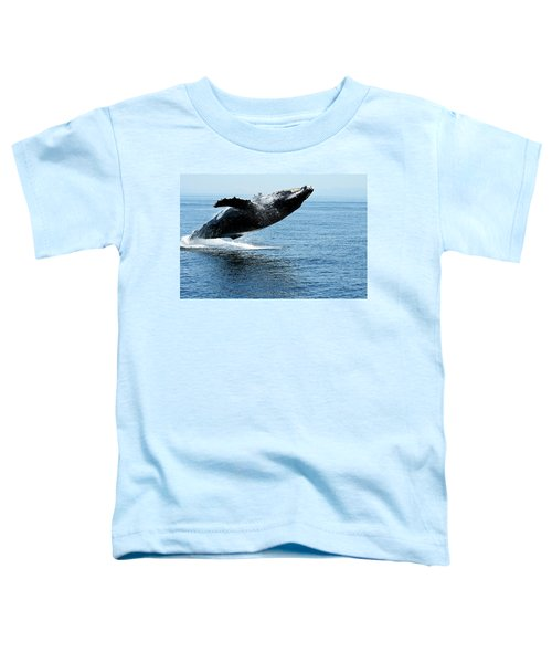 Breaching Humpback Whales Happy-2 Toddler T-Shirt