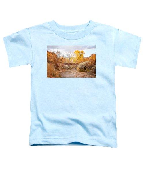 Bridge In Teasdale Toddler T-Shirt