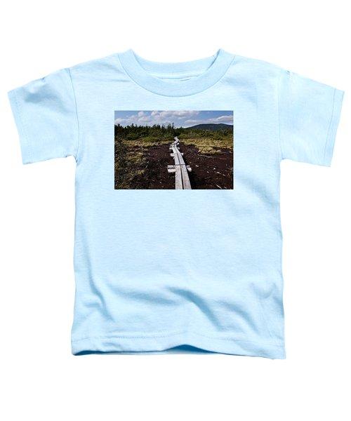 Bridge To Mizpah Toddler T-Shirt