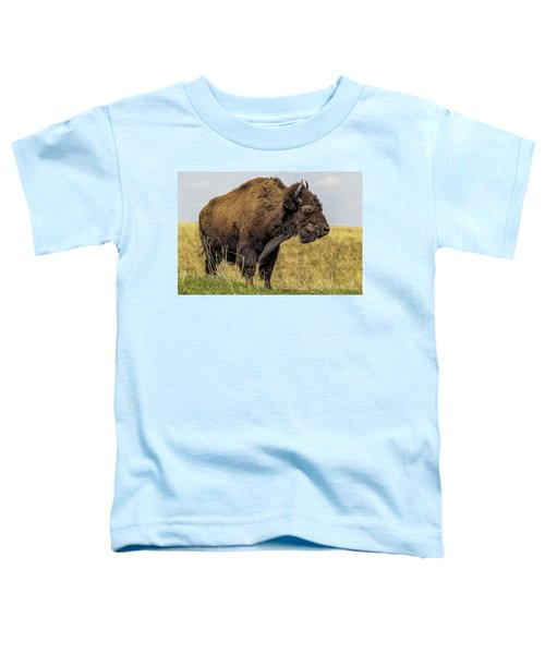 Buffalo Toddler T-Shirt