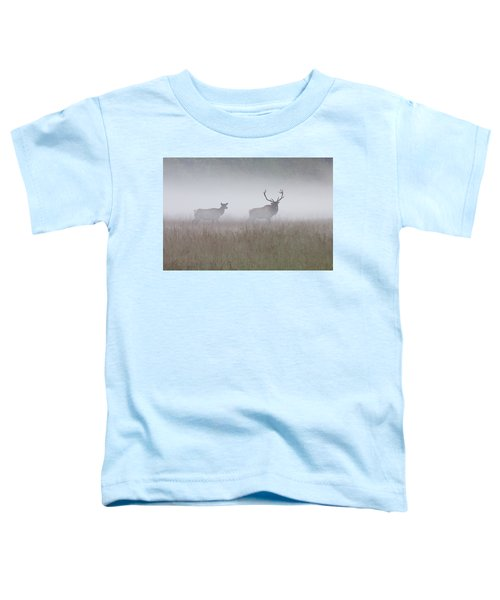 Bull And Cow Elk In Fog - September 30 2016 Toddler T-Shirt