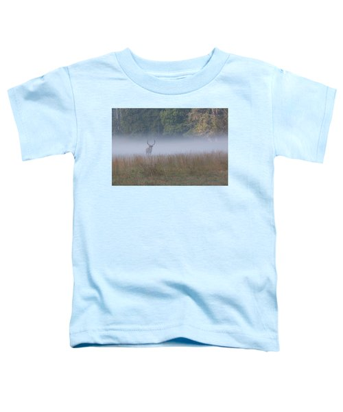 Bull Elk Disappearing In Fog - September 30 2016 Toddler T-Shirt