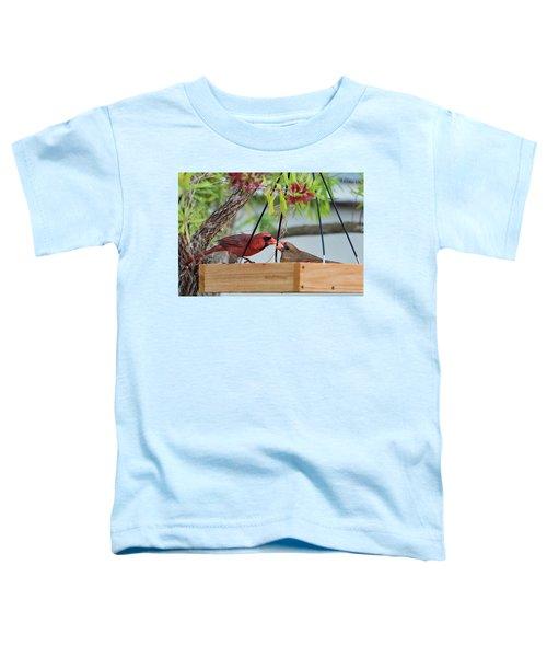 Cardinal Feeding  Toddler T-Shirt