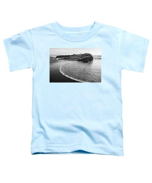Carpinteria Seagull Toddler T-Shirt