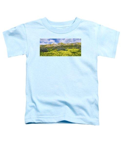 Carrizo Spring Toddler T-Shirt
