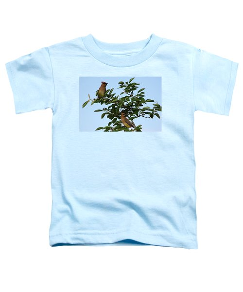 Cedar Waxwing Pair Toddler T-Shirt