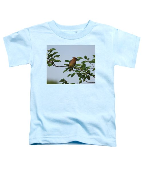 Cedar Waxwing Profile Toddler T-Shirt
